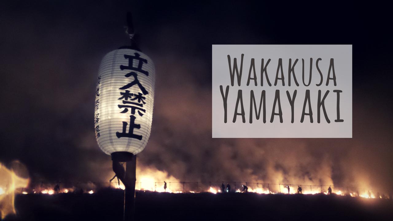 Wakakusa Yamayaki: Burning Mountain Festival in Japan | Cultural ...